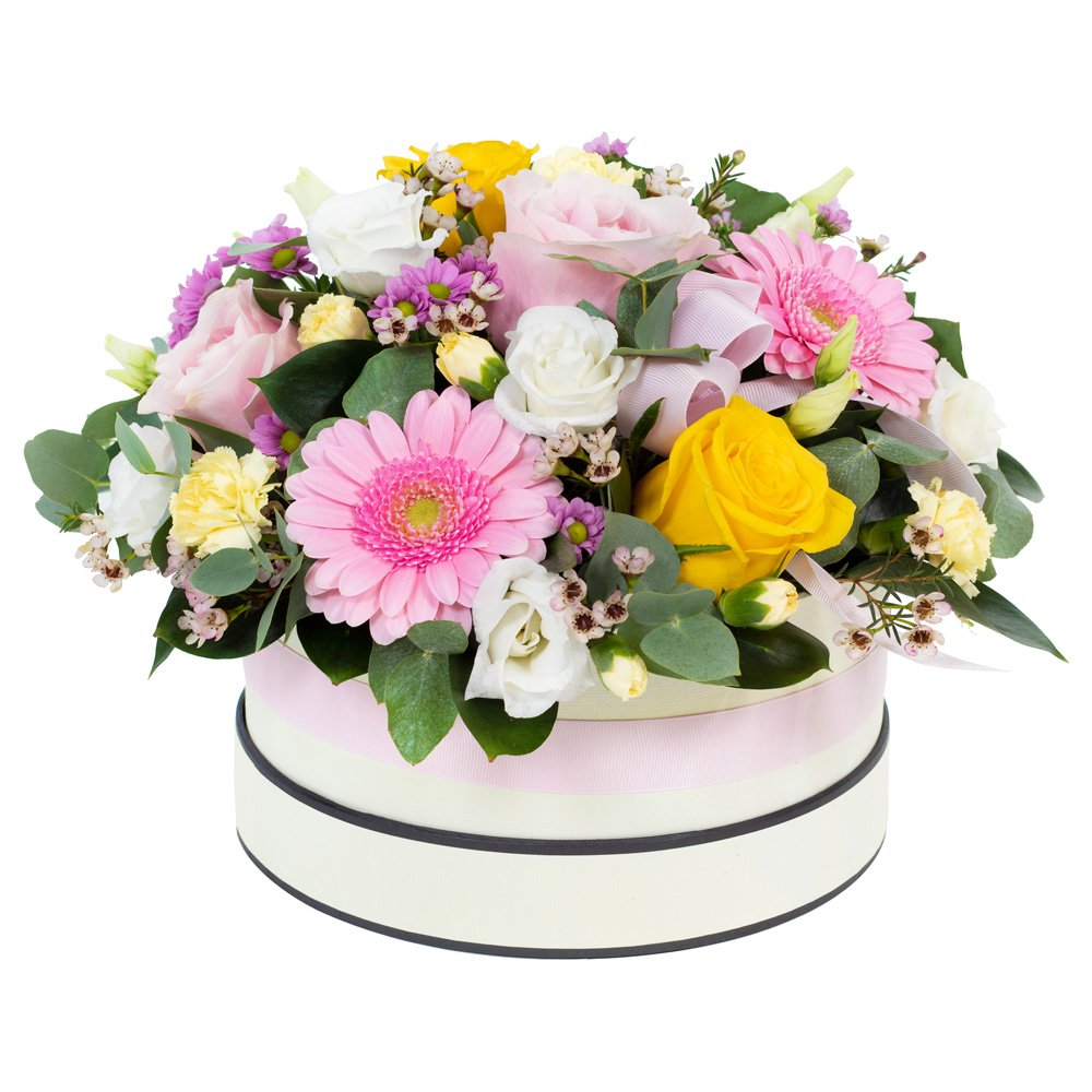 Dream Land - Hat Box Arrangement